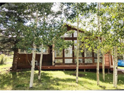 Photo of 514 Blue Spruce Street, Woodland Park, CO 80863 (MLS # 9964189)