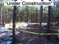 Photo of 1319 being verified Drive, Woodland Park, CO 80863 (MLS # 9976694)