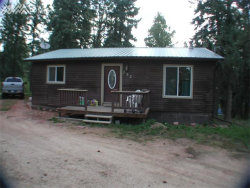 Photo of 252 Blossom Road, Woodland Park, CO 80863 (MLS # 6129091)