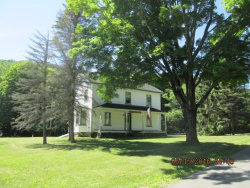 Photo of 859 Berry Brook Road, Roscoe, NY 12776 (MLS # 4216140)