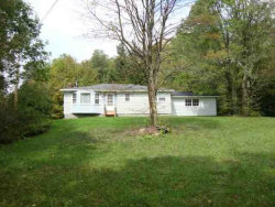 Photo of 2777 Holiday Brook Road, Roscoe, NY 12776 (MLS # 4216214)