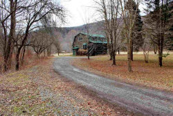 Photo of 36 Airport Road, Downsville, NY 13755 (MLS # 4220048)