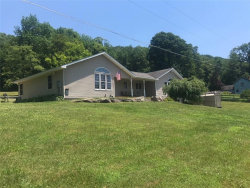 Photo of 261 Gulf Road, Roscoe, NY 12776 (MLS # 4220145)