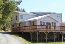 Photo of 78 White Roe Lake Road, Livingston Manor, NY 12758 (MLS # 4220428)