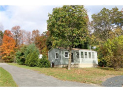 Photo for 63 Beaverbrook Road, New Windsor, NY 12553 (MLS # 4646031)