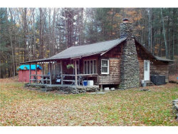 Photo of 255 Hammer Hollow Road, call Listing Agent, NY 12776 (MLS # 4647623)