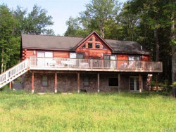 Photo of 724 Sackett Lake Road, Monticello, NY 12701 (MLS # 4707185)