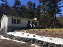 Photo of 761 State Route 55, Eldred, NY 12732 (MLS # 4714105)