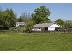 Photo of 171 Blue Hill Road, Hopewell Junction, NY 12533 (MLS # 4720478)