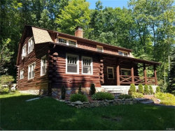 Photo of 119 Jansen Road, Holmes, NY 12531 (MLS # 4725730)