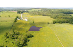 Photo of 321 Swiss Hill Road, Jeffersonville, NY 12748 (MLS # 4733151)