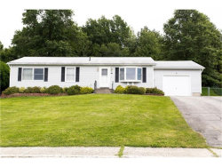 Photo of 46 Lincoln Circle, Wallkill, NY 12589 (MLS # 4738875)