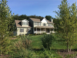Photo of 204 Brimstone Hill Road, Pine Bush, NY 12566 (MLS # 4741574)