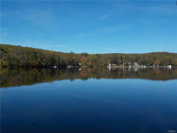Photo of 38 Unadilla Road, Putnam Valley, NY 10579 (MLS # 4747648)