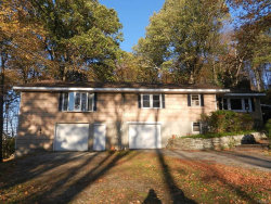 Photo of 28 Birch Drive, Mahopac, NY 10541 (MLS # 4748117)