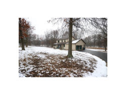 Photo of 103 Wallace Road, Maybrook, NY 12543 (MLS # 4752169)