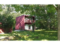 Photo of 14 Bannister Lane, Wingdale, NY 12594 (MLS # 4802084)