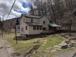 Photo of 114 Cooks Brook Road, call Listing Agent, NY 12776 (MLS # 4808622)
