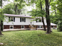 Photo of 78 Ritter Road, Stormville, NY 12582 (MLS # 4809896)