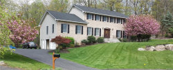Photo of 39 Algonquin Drive, Stony Point, NY 10980 (MLS # 4810582)