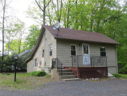Photo of 42 Lake Shore Drive, Pine Bush, NY 12566 (MLS # 4812388)
