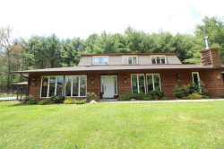 Photo of 863 Crystal Lake Road, Narrowsburg, NY 12764 (MLS # 4812984)