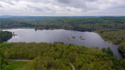 Photo of 22 jaketown Road, Swan Lake, NY 12783 (MLS # 4813888)