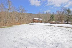 Photo of 33 Weitz Road, Hopewell Junction, NY 12533 (MLS # 4814283)