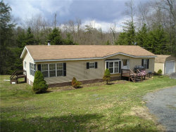 Photo of 2599 Morton Hill Road, call Listing Agent, NY 12776 (MLS # 4818821)