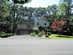 Photo of 4 Pond Lane, Rock Hill, NY 12775 (MLS # 4829283)
