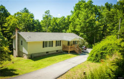 Photo of 411 Shawanga Lodge Road, Bloomingburg, NY 12721 (MLS # 4834636)