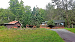 Photo of 13 Brenner Road, Grahamsville, NY 12740 (MLS # 4835808)