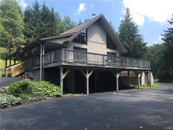 Photo of 2630 Holiday & Berry Brook Rd, Roscoe, NY 12776 (MLS # 4837392)