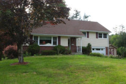 Photo of 54 Yaun Avenue, Liberty, NY 12754 (MLS # 4838272)