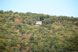 Photo of 9479 State Route 97, Callicoon, NY 12723 (MLS # 4838296)