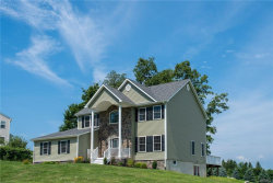 Photo of 51 Hill View Drive, Florida, NY 10921 (MLS # 4838515)