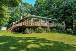 Photo of 551 South Plank Road, Westtown, NY 10998 (MLS # 4838597)