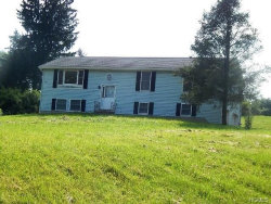 Photo of 5 Hi View Drive, Wingdale, NY 12594 (MLS # 4838834)