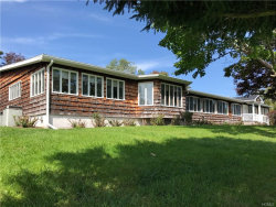 Photo of 931 White Hill Road, NY 13820 (MLS # 4842758)