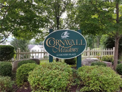 Photo of 311 Cornwall Meadows Lane, Patterson, NY 12563 (MLS # 4843687)