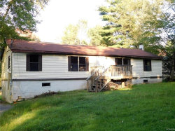 Photo of 101 Proctor Road, Eldred, NY 12732 (MLS # 4844042)