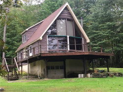 Photo of 780 Stockport Road, Hancock, NY 13783 (MLS # 4846305)