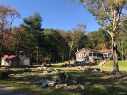 Photo of 4 Leavenworth Road, Eldred, NY 12732 (MLS # 4848439)