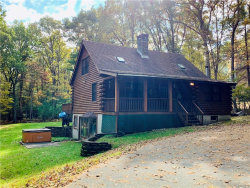 Photo of 81 Airport Road, Eldred, NY 12732 (MLS # 4849649)