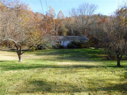 Photo of 150 Birch Hill Road, Patterson, NY 12563 (MLS # 4851279)
