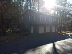 Photo of 253 Pepacton Hollow Road, Grahamsville, NY 12740 (MLS # 4851365)