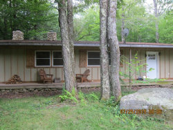 Photo of 757 Red Hill Knolls Road, Grahamsville, NY 12740 (MLS # 4852106)