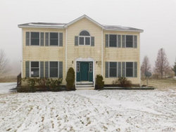 Photo of 803 County Route 164, Callicoon, NY 12723 (MLS # 4855967)