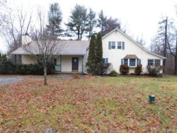 Photo of 294 Quaker Street, Wallkill, NY 12589 (MLS # 4856272)
