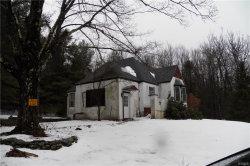 Photo of 273 Post Hill Road, Mountain Dale, NY 12763 (MLS # 4903767)